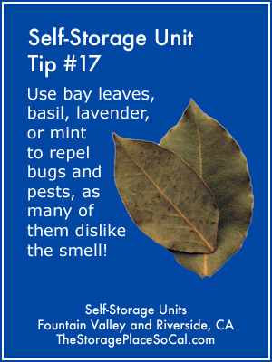 Self-Storage Tip 17: Use bay leaves to repel bugs.
